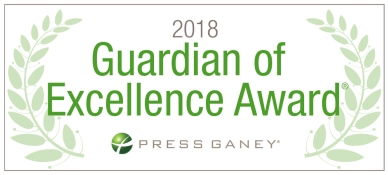 2018 Guardian of Excellence Award